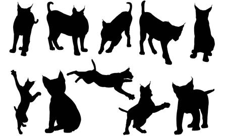 Lynx silhouette illustration vectorielle Banque d'images - 81932121