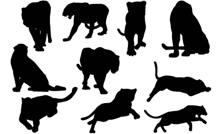 Panther  silhouette vector illustration