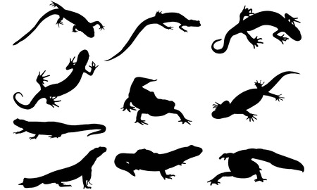 Newt  silhouette vector illustration Illustration