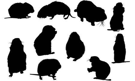 Illustration vectorielle de Lemming silhouette Banque d'images - 82044636