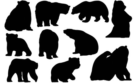 Polar Bear  silhouette vector illustration
