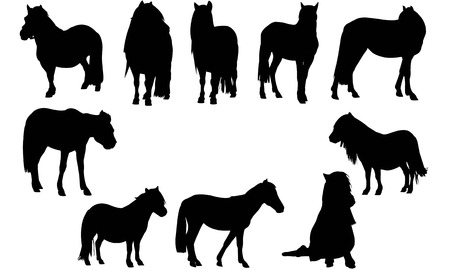 Pony  silhouette vector illustration
