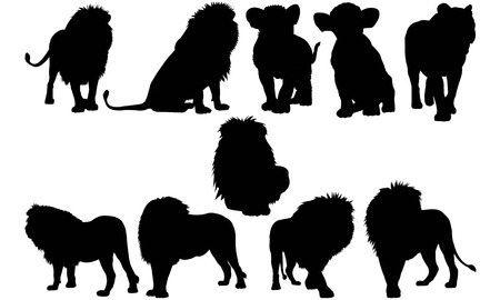 Lion  silhouette vector illustration Çizim