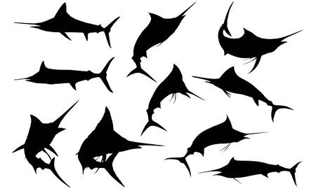 Marlin  silhouette vector illustration
