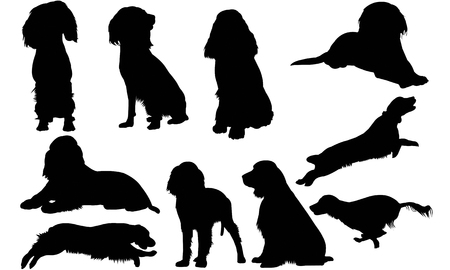 English Springer Spaniel silhouette illustration