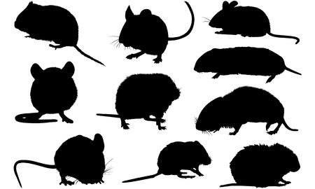 Vole silhouette illustration Vector Illustration