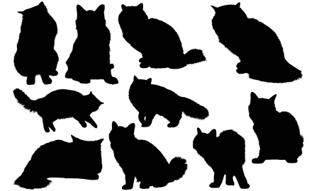 Burmese Cat silhouette illustration