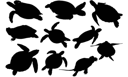 Turtle silhouet illustratie Stock Illustratie