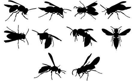 Wasp silhouette illustration Vectores