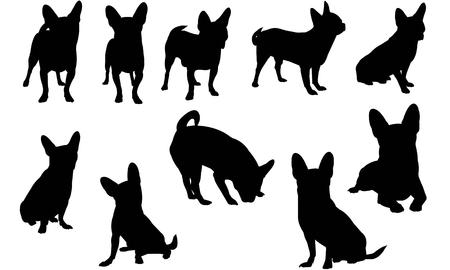Chihuahua Dog silhouette illustration Ilustração