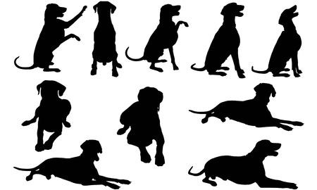 Dobermann Dog silhouette illustration