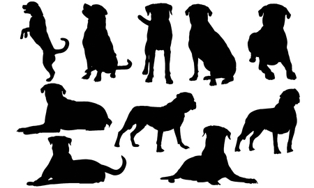 Rottweiler Dog silhouette illustration Vectores