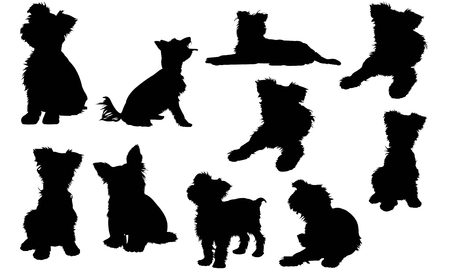 Yorkshire Terrier Dog silhouette illustration Vectores