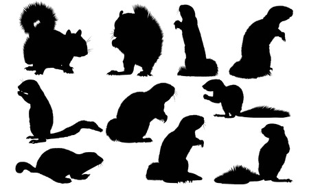Xerinae silhouette illustration