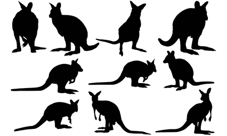 Wallaby silhouette illustration