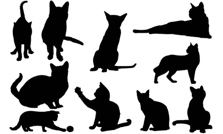 Siamese Cat silhouette illustration