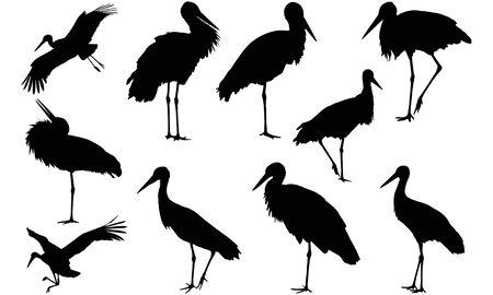 Stork silhouette illustration