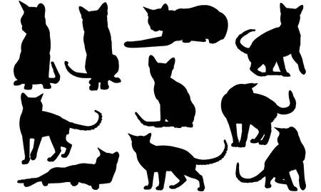 Tonkinese Cat silhouette illustration