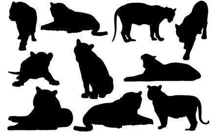 Tiger silhouette illustration Illustration