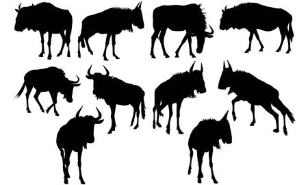 Wildebeest silhouette illustration
