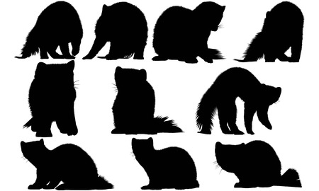 Weasel silhouette illustration