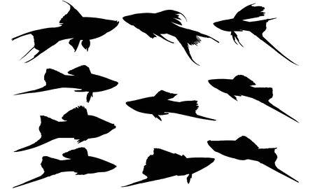Sword tail silhouette illustration