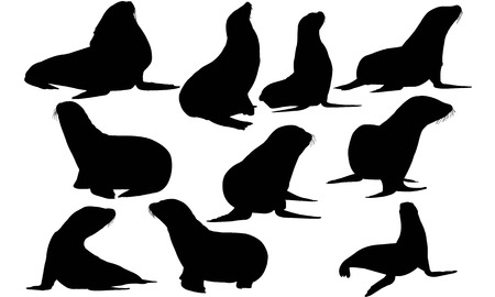 Sea lion silhouette illustration Vectores