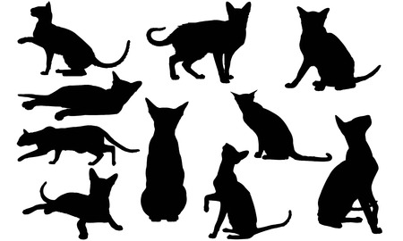 Oosterse kat silhouet illustratie Stock Illustratie