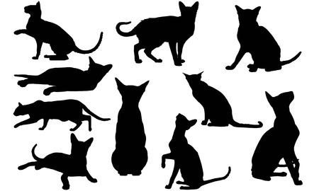 Oriental Cat silhouette illustration