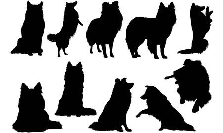 Shetland Sheepdog Dog silhouette illustration
