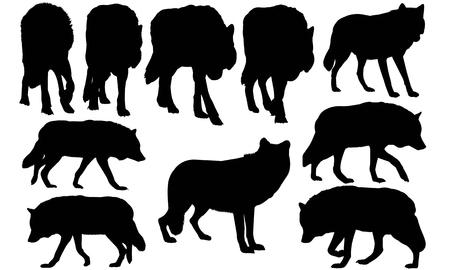 Wolf silhouette illustration