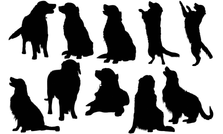 Golden Retriever Dog silhouette illustration