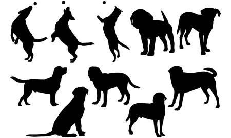 Labrador Retriever Dog silhouette illustration