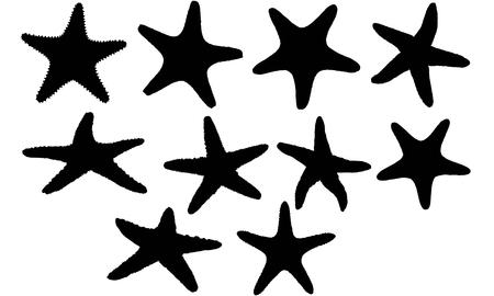 Star fish silhouette illustration Иллюстрация