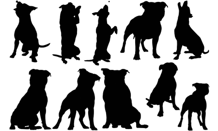 Staffordshire Bull Terrier Dog silhouette illustration Vettoriali
