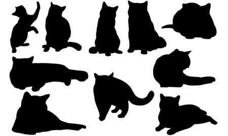 영국 쇼트 헤어 고양이 실루엣 일러스트 레이션