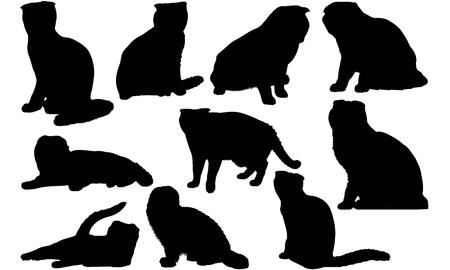Scottish Fold Cat silhouette illustration Иллюстрация