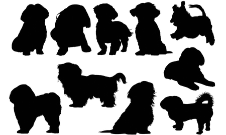 Shih Tzu Dog silhouette illustration