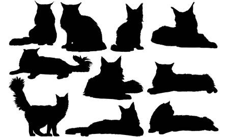 Maine Coon Cat silhouette illustration Illustration