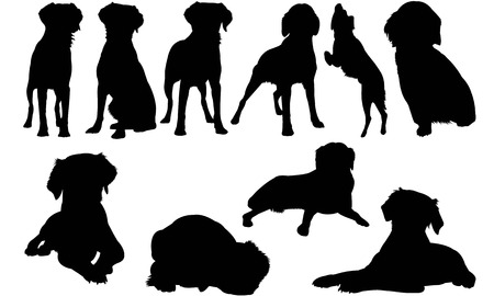 Brittany Spaniel Dog silhouette illustration