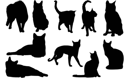 Russian Blue Cat silhouette illustration