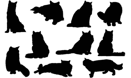 Ragdoll Cat silhouette illustration Ilustrace