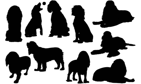English Cocker Spaniel Dog silhouette illustration Illustration