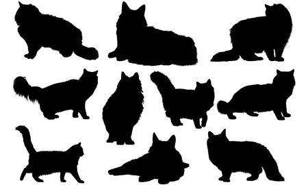 Norwegian Forest Cat silhouette illustration Иллюстрация