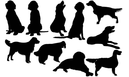 English Setter Dog silhouette illustration
