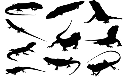 Reptile silhouette illustration