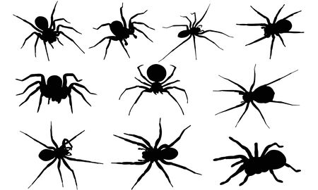Spider silhouet illustratie Stock Illustratie