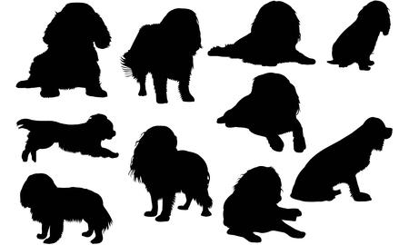 Arrogante het silhouetillustratie van Koningscharles spaniel dog Vector Illustratie