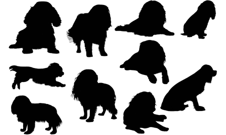 Cavalier King Charles Spaniel Dog silhouette illustration Banco de Imagens - 92160132