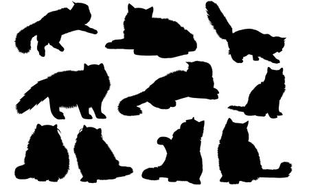 Persian Cat silhouette illustration